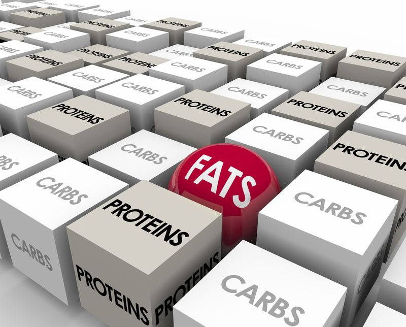 Proteins Carbs and Fats
